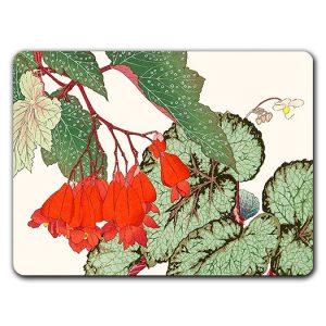 Sicilia Fiori Begonia