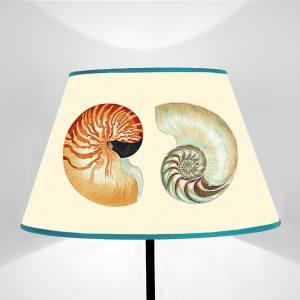 Mare Conchiglie Nautilus